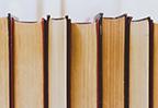 北京遇上西雅图2之不二情书经典台词