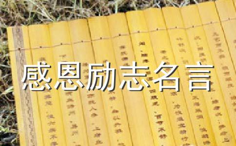 2013感动中国人物李文波事迹