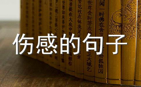 伤感爱情宣言经典语录QQ签名